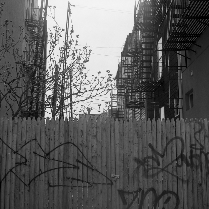 Daniel A. Echevarria Photography | Above the Spill: Photographs of Greenpoint, Brooklyn
